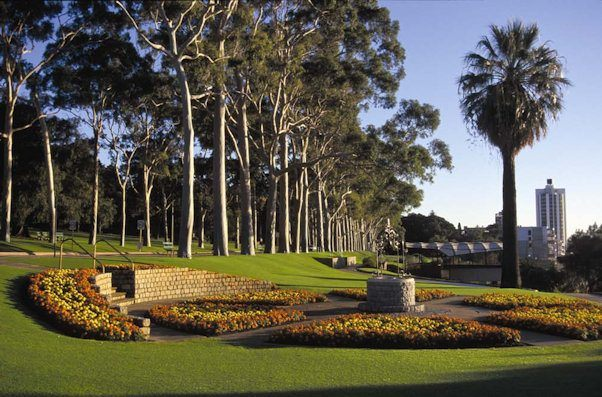 Kings Park and Botanical Gardens in Perth
