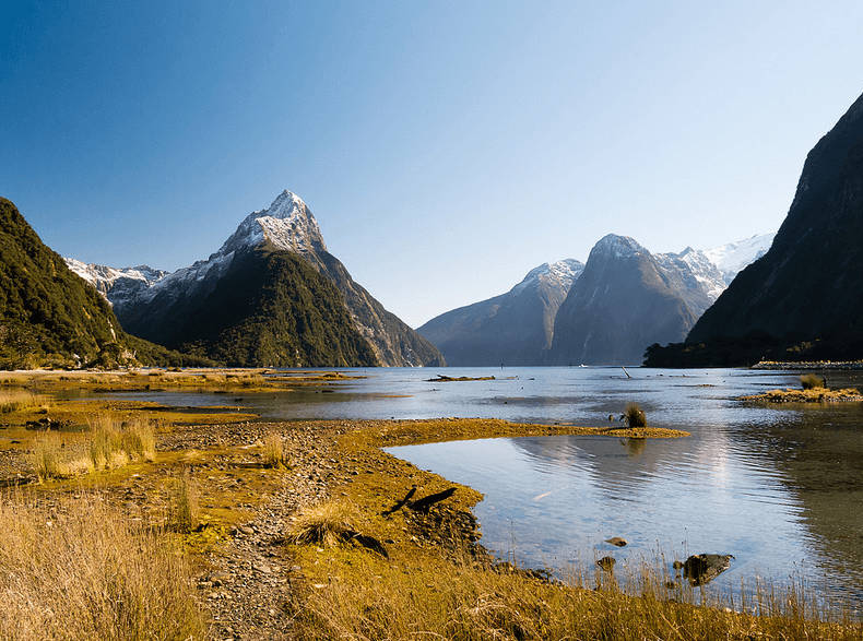 Milford South in New Zealand's South island